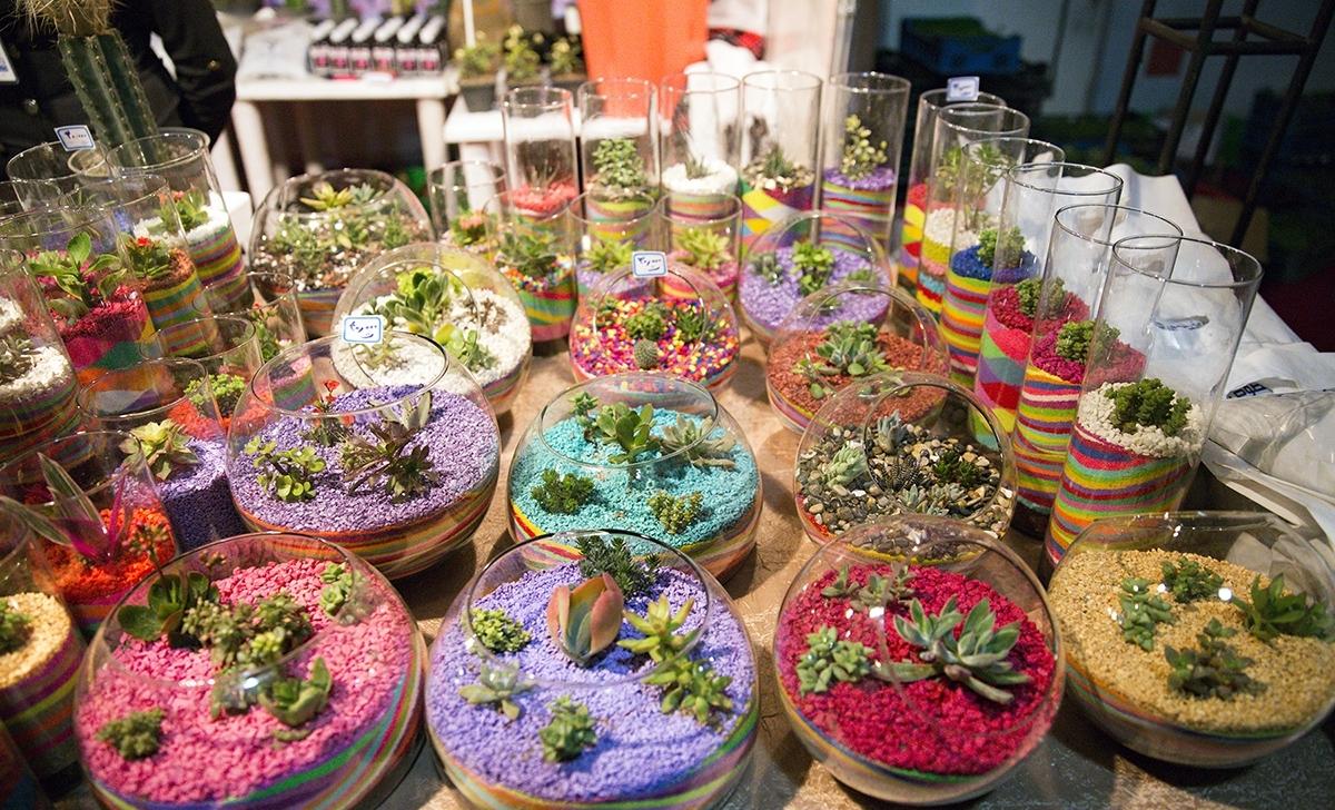سیزدهمین نمایشگاه گل و گیاه و تجهیزات گلخانه ای شیراز