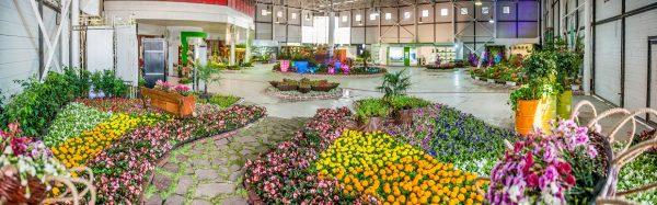 ششمین نمایشگاه تخصصی گل و گیاه اصفهان