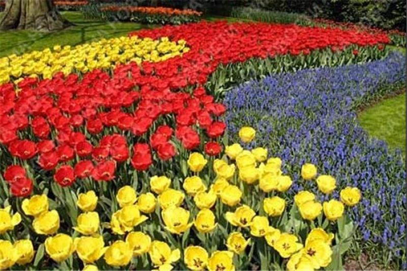 نمایشگاه فضای سبز تبریز